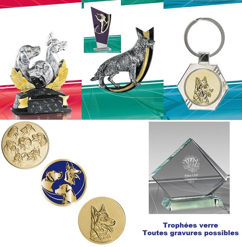 Trophées concours canin félin
