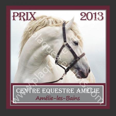 plaques concours equitation chevaux aluminium alu personnalisable CCE