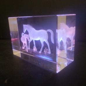 trophee verre 3D cocours elevage poulain pouliniere