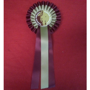 Flots de concours équestre équitation chevaux ruban ribbon
