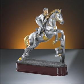 Trophée CSO 25