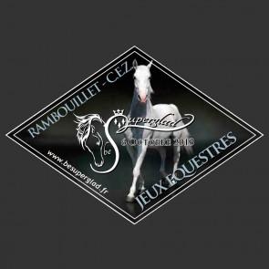 plaques losange poneys cheval concours boxe CSO elevage