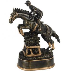 Trophée CCE concours complet d'équitation cso cheval poneys haie