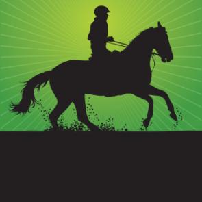 design CCE concours complet equitation plaques et flots