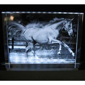 Souvenir cheval verre 3D