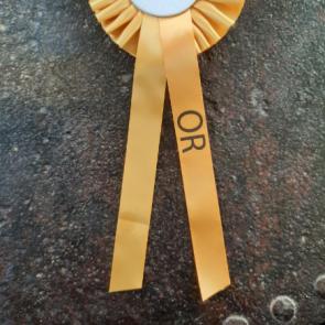 Marquage impression sur ruban pendant de flot concours hippique equitation