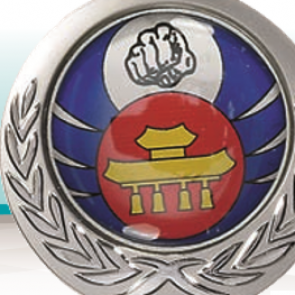 Pastille domée epoxy 50mm personnaliee quadri medaille porte-clefs
