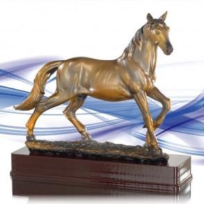 trophee elevage cheval en liberte concours equitation equestre poulain