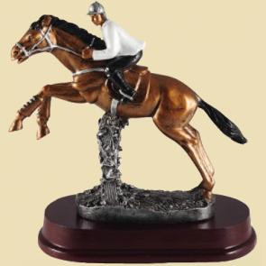 Trophées concours complet CSO equitation chevaux cheval equestre poneys poney