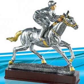 Trophee course jokey chevaux juments plat obstacles
