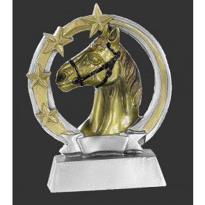 Trophee poney equitation cheval discount concours