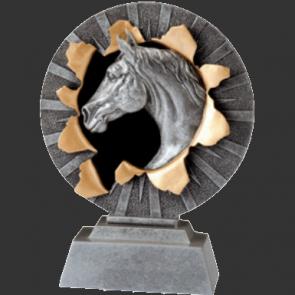 Trophees concours equitation hippique prix vainqueur chevaux cheval poney